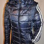 Куртка 2 в 1 Полоска