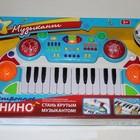 Пианино 7234 Музыкант, муз, свет, микрофон, запись, воспроизведение. Доставка по Киеву!