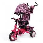 Велосипед трехколесный Tilly Bt-Ct-0005  Zoo-Trike!