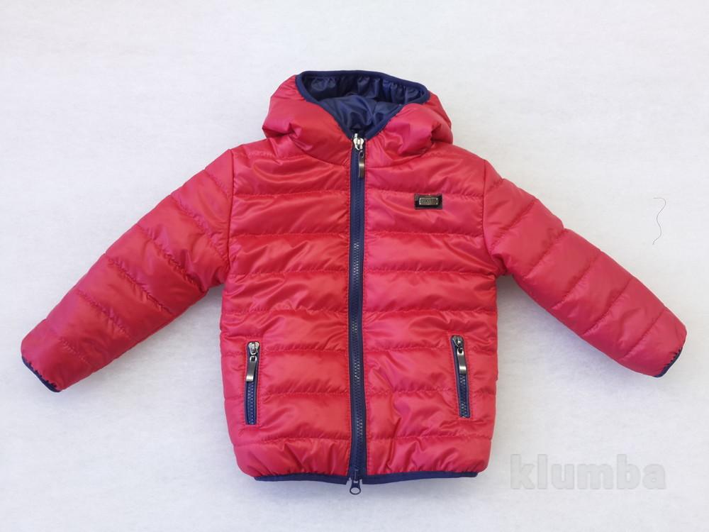 Куртка для мальчика демисезонная 92-116 размеры фото №1