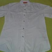 Итальянская рубашка Versace р.L хлопок в идеальном состоянии