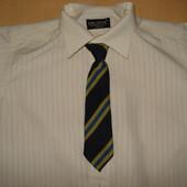 галстук, галстуки детские