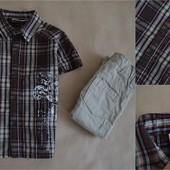 Ну очень крутая рубашка Coala kids 3 г.