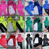 Теплый деми-зима комплект Минни с ушками для девочки  разные расцветки