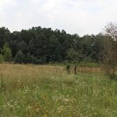 53 сотки с домиком под дачу. Живописная местность, лес, озеро.