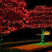 Праздничная иллюминация,новогоднее световое оформление