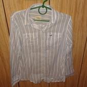Классная  рубашка блуза от Hollister. р.М
