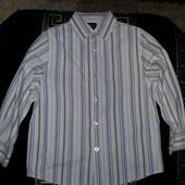 Рубашка Next , размер указан 5 лет, рост 110 см.