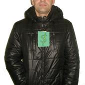 Куртка мужская демисезонная код: 101 черная