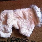 Меховой комбинизен для мини собачки.
