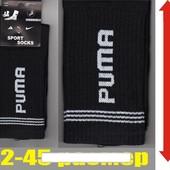 """Носки спортивные мужские демисезонные """"Puma"""" высокая резинка 42-45р."""