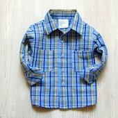Стильная рубашечка для мальчика. Blue. Размер 6-9 месяцев. Состояние: идеальное