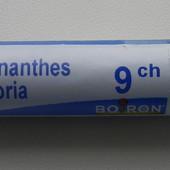 Lachnanthes tinctoria Ignatia Amara Hypericum perforatum Boiron