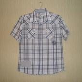 Мужская рубашка Сedarwoodstate