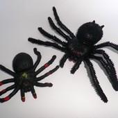 Паук пауки ELC Toy Major