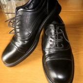 Кожаные мужские туфли на шнурке/ р.44
