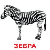 Вундеркинд с пеленок Дикие животные, 20 карточек, рус. 5061