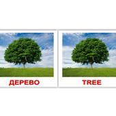 Вундеркинд с пеленок Природа-Nature 80 карточек, рус. eng. 6938