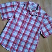 Рубашка Rebel 6-7 л 122 см Хлопок