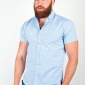 Рубашка летняя в мелкую клетку №36F012 4 цвета