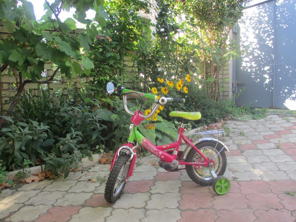 Продам детский велосипед фото №1