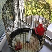 Недорого!!!Клетка для попугая(б/у)