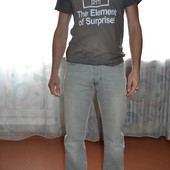 Мужские классические джинсы Calvin Klein