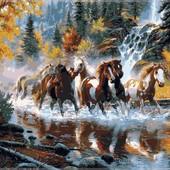 Картина по номерам Turbo  Дикие лошади VP130