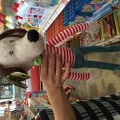 Собака денди, пес денді тм левеня великий вибір м'які іграшки за кращими цінами