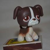 Петс шопы pet shop игрушки зоомагазин Littlest pet shop LPS с магнитом стоячка