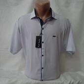 Мужская рубашка с коротким рукавом на кнопках Paul Semih, Турция. Большие размеры. Разные цвета.