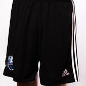 Шорты спортивные мужские Adids Climacool (L)
