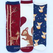 Женские носки, Primark