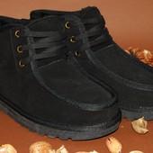 Низкие мужские угги на шнурках