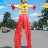 Штаны для ходулистки 42-44 размер