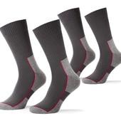 Качественные мужские носки хлопок р. 41-43 Tchibo Германия