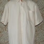 Мужская рубашка Pan Filo 44р
