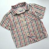 Рубашка в клетку Matalan (9-12 мес)