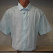 Мужская рубашка с коротким рукавом в полоску OWK.