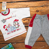Костюм на мальчика Пингвины, 68 74 80 размер, кофта штаны, 100% хлопок, Турция