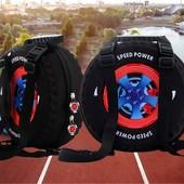 Потрясающий рюкзак - колесо.  Лучший подарок!!!