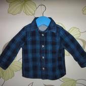 Синяя вельветовая рубашка Tu 3-6 мес, 62-68 см