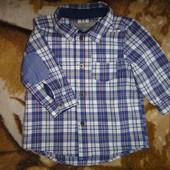 Рубашка H&M  4-6 мес, 68 см