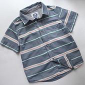 Рубашка в полоску TU (1,5-2 года)
