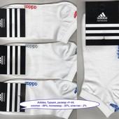 Носки мужские х/б Adidas  деми, спорт, короткие, 41-44р.