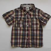 Рубашка для девочки на рост 98-104 см (Papagino)