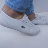 Кросівки 37 розмір! Lacoste