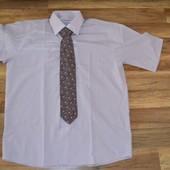Новая летняя рубаха Vinzo Vista, L с галстуком