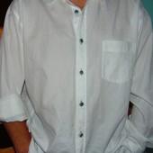 Брендовая стильная нарядная рубашка Signum (Сигнум) хл-2хл .