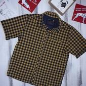 Next Рубашка в клетку 4-5 л 110 см Хлопок